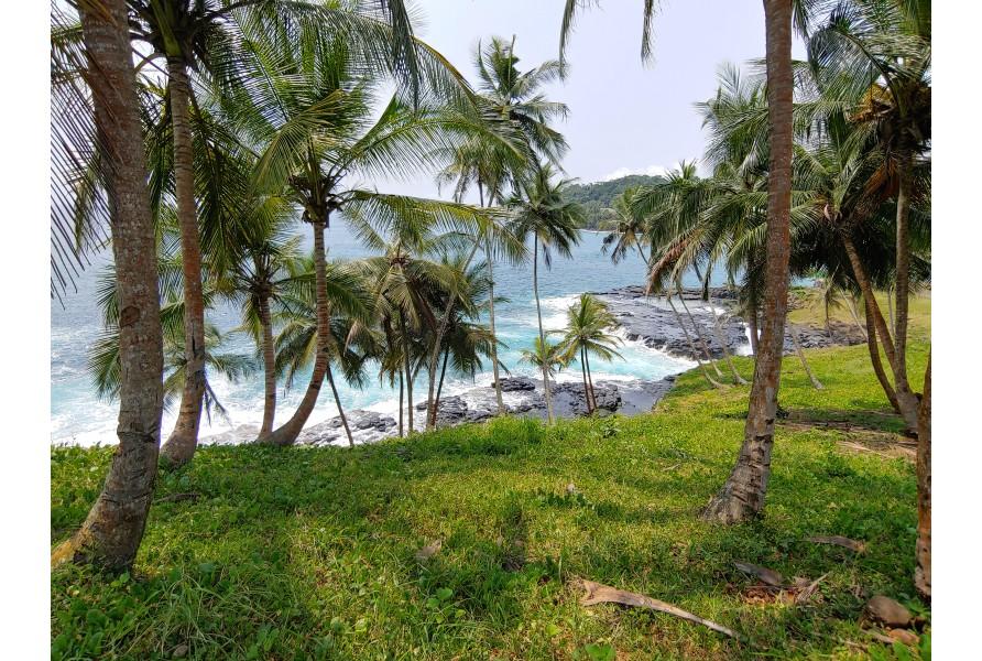 Zakaj na otok Sao Tome?